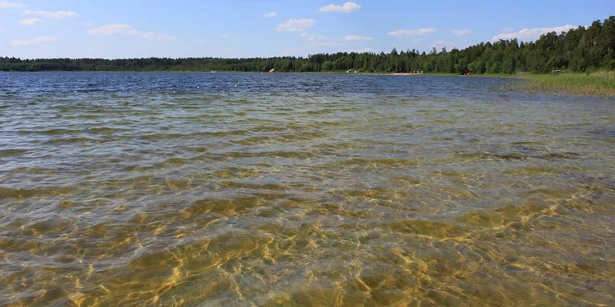 Белое Озеро (Николаевский район, Ульяновская область)